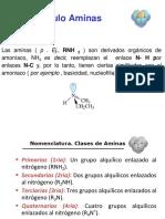 1 Primera Presentación Aminas