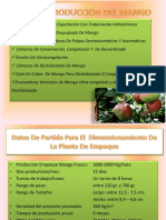 Lineas Produccion Mango Frutas