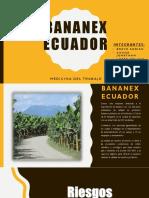 Bananex Ecuador PRESENTACION