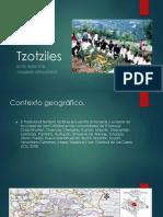 Tzotziles