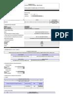 form5_directiva002_2017EF6301.xls