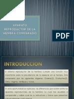 Aparato Reproductor de La Hembra Comparado (1)Oriiginaaal