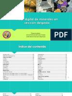 atlas_digital_de_minerales_en_seccion_delgada.pdf