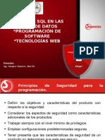 SEGURMATICA Seguridad_Programacion_Software.ppt