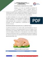 Microorganismos Patogenos Carne (3)