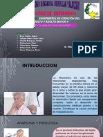 4. Neomonia en El Adulto y Adulto Mayor II