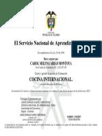 Certificado Sena 1
