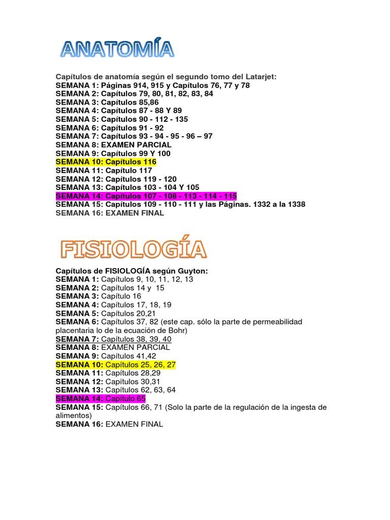 Excepcional Capítulo 6 Anatomía Y La Fisiología Become Imagen ...