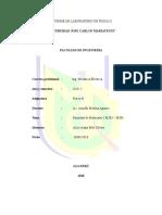 Informe de Laboratorio de Fisica II m303 m304