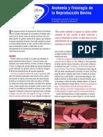 Anatomia y fisiologia Bovinos.pdf