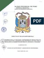 Directiva Nro 003 Mpp-gim-sgopm