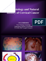 Natural History of Cervical Cancer