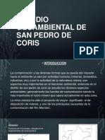 Estudio Geoambiental de San Pedro de Coris