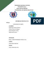 Informe 5 -Capacidad de Campo