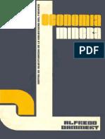 Libro Economia Minera