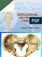 articulacionesdelmiembroinferior