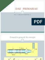 PERDIDAS PRIMARIAS[1]