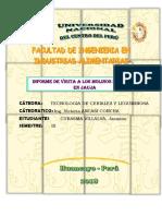 informe molinos.docx
