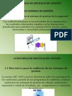 6 CAP.06 AUDITORIA.pdf