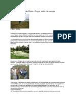 Resumen-Los Humedales de Pisco