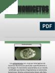 Clase 10 Microbiologìa