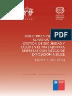 directrices-especificas-sistemas-silice-2013.pdf