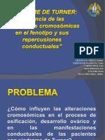 GRUPO 3- TURNER-DIAPOS.pptx