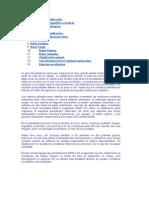 Taxonomía y clasificación