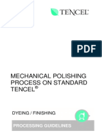 Mechanical Polishing Process