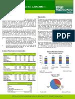 Union_Andina_de_Cementos.pdf