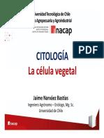 Elementos de Anatomía y Fisiología Vegetal 63 - Citología (La Célula Vegetal)