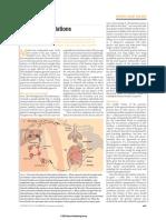 wirth2002.pdf