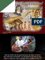 dedondevenimos-120614095934-phpapp01.pps