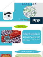 La Celula Biologia