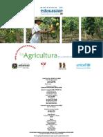 Agricultura en la nación Mosetén de Convendo