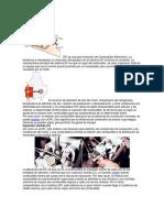 Sistema EFI.docx
