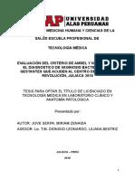 PROYECTO_EVALUACIÓN DE CRITERIOS DE AMSEL_2018_MIRIMA_JOVE.doc