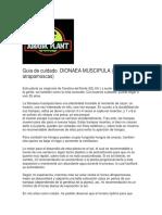 Guia de cuidado  DIONAEA MUSCIPULA.docx