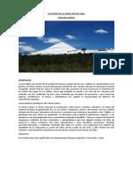 VOLCANES DE LA ZONA SUR DE CHILE.docx