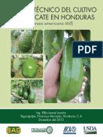Manual-Tecnico-del-cultivo-de-Aguacate.pdf