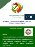2ImportanciaBeneficiosSG 2015.pdf