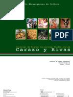 Catalogo Bienes Culturales Tradicionales Departamentos de Carazo y Rivas