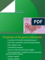 8. Salmonella