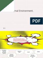 External Environment Revision