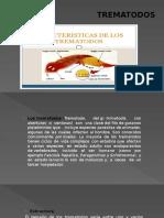 TREMATODOS.pptx