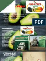 Exportacion de Palta Inka Peru