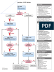 PALS Cardiac Arrest Algorithm