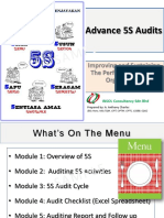 Advance 5S Audits