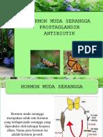 8. Hormon Muda Serangga Prostlagandin Dan Antibiotik
