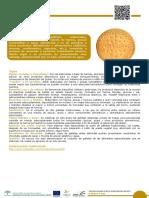 7_Galleta.pdf